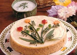 Vegetable Cheesecake